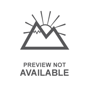 Shirley A. Chisholm.jpg